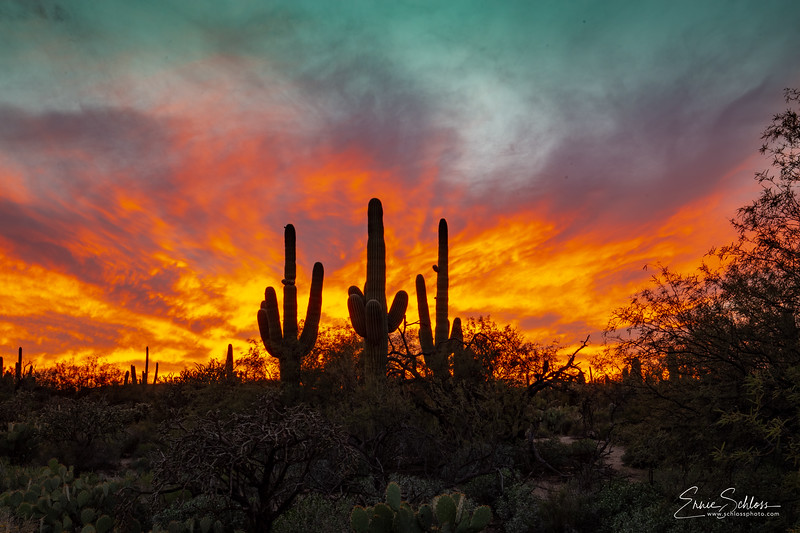 Sabino Sunset 10=29=2018d-.jpg
