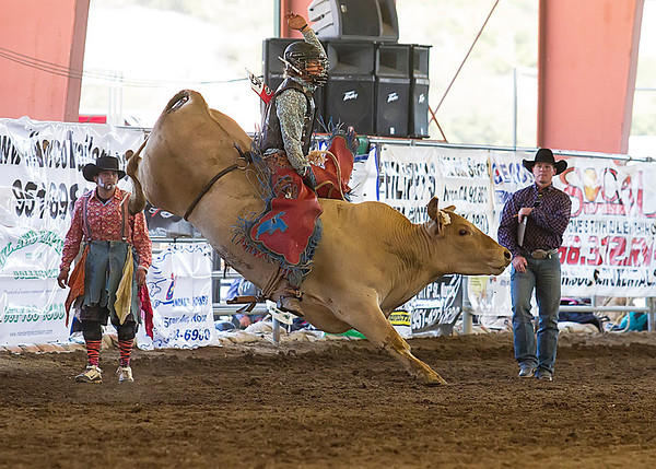 2013 Norco Horseweek Bull Riding