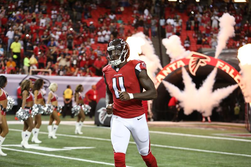 Falcons--3.jpg
