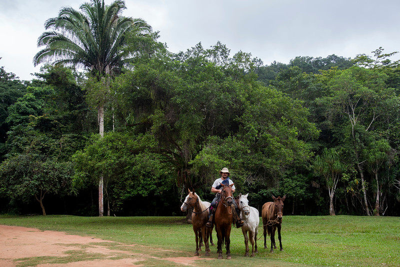 Martz Farm in San Ignacio, Belize