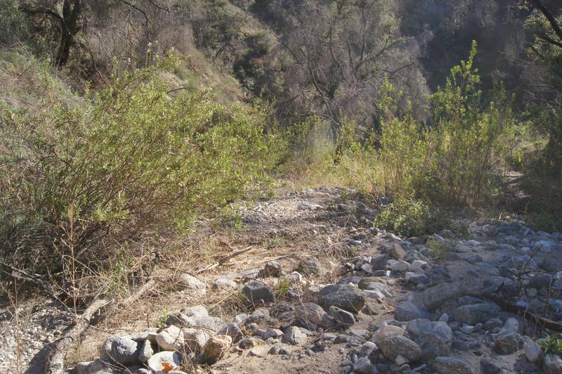 20120113004-El Prieto Trailwork Prep.jpg