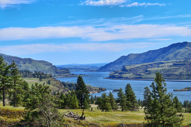 A lovely spring day of wildflowers and exploring. Photo of the beautiful Columbia River, east of Hood River on the Washington side, taken from Catherine Creek trail on Sunday, March 29th.   Nick Wiltgen  Portland OR 97215
