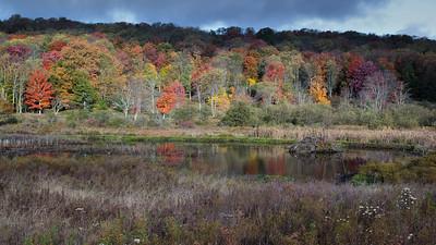 Balsam Swamp SUnrise - Oct. 5 2014