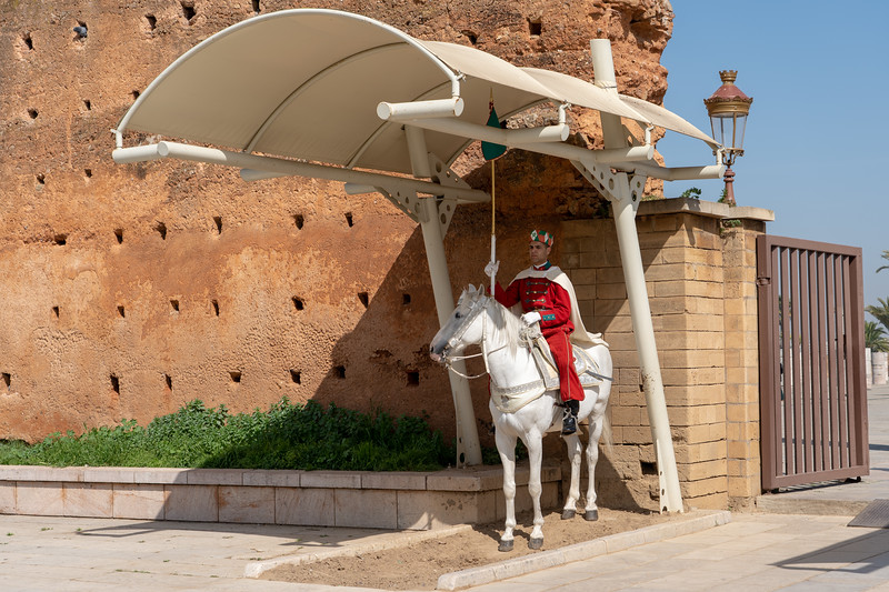 Horse guard outside Hassan Tower in Rabat