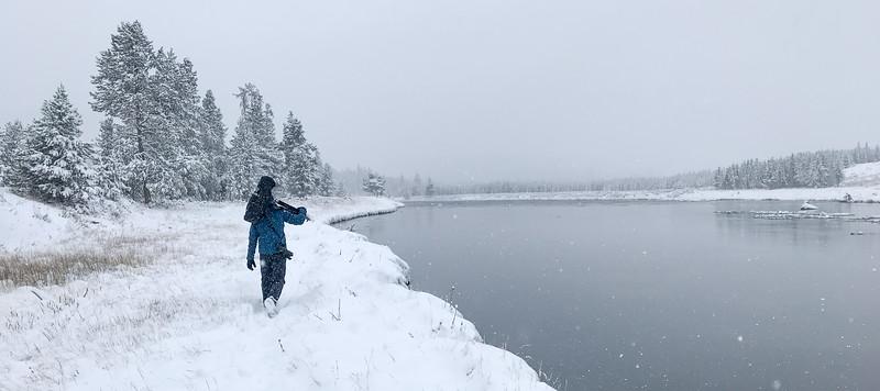 Yellowstone National Park WY  IMG_7385.jpg
