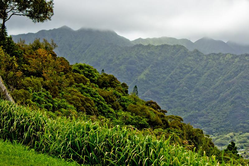 Journey into Oahu Photograph 160