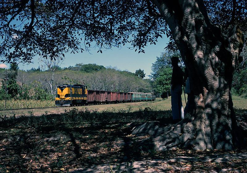 March 1971.  IRCA mixed train at Texis Junction, El Salvador.