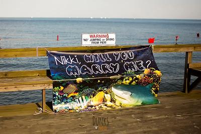 Dan + Nikki - Proposal: 5.25.16