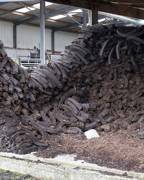 Peat moss ready to be used as fuel.