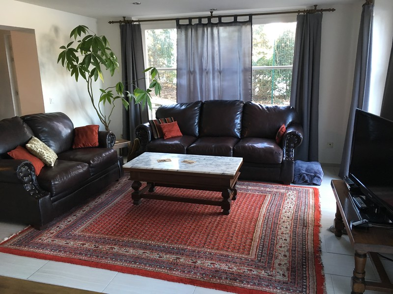 Guest apartment furnished living room.