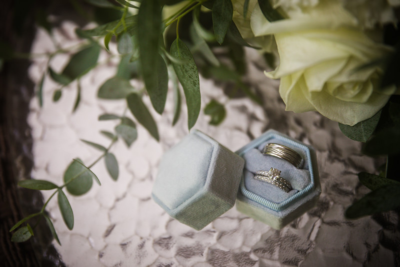 TARYN AND SETH - THE MICRO WEDDING - 1.jpg