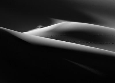Dunes in monochrome