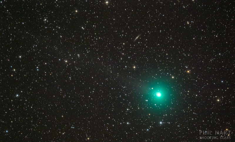 Comet Lovejoy Q2_0316.jpg
