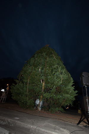 Lighting of the 2013 Xmas Tree