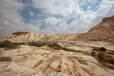 Northern Negev