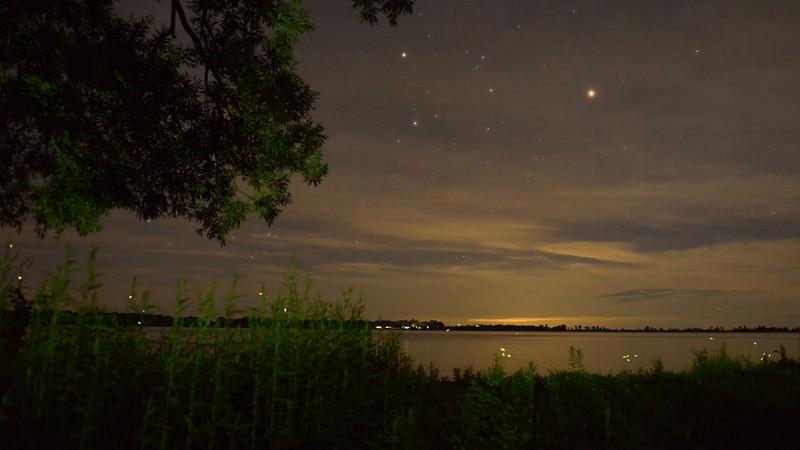 Fireflies over the lake