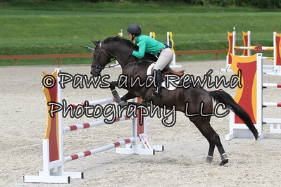 Grand Prix Ring: High Schooling Jumpers
