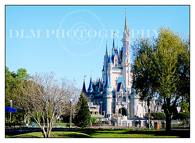 Walt Disney World Jan 2009