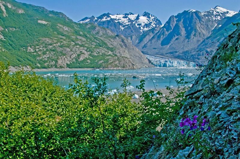 McBride Glacier.jpg