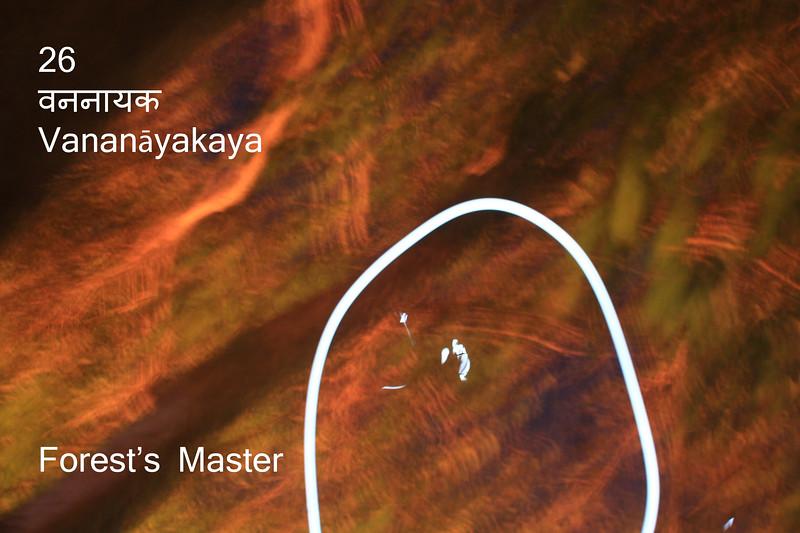 26  vananāyaka.jpg