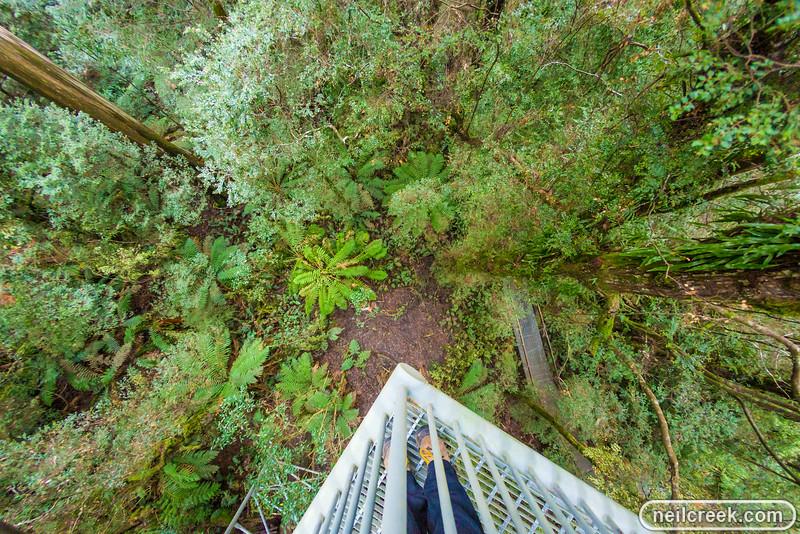 creek-140819-268.jpg