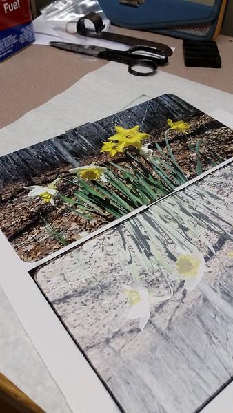 Studio & Workflow Photos & Videos