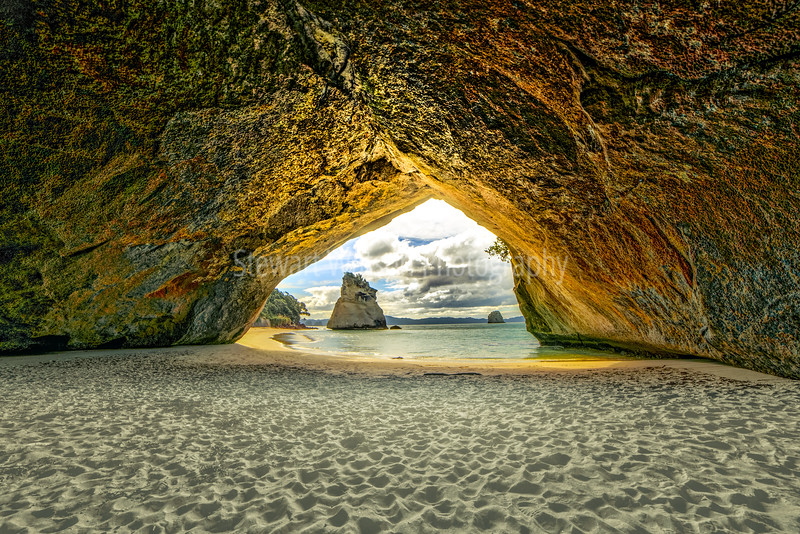 The Famous arch the coast at Cathedral Cove in Coromandel New Zealand