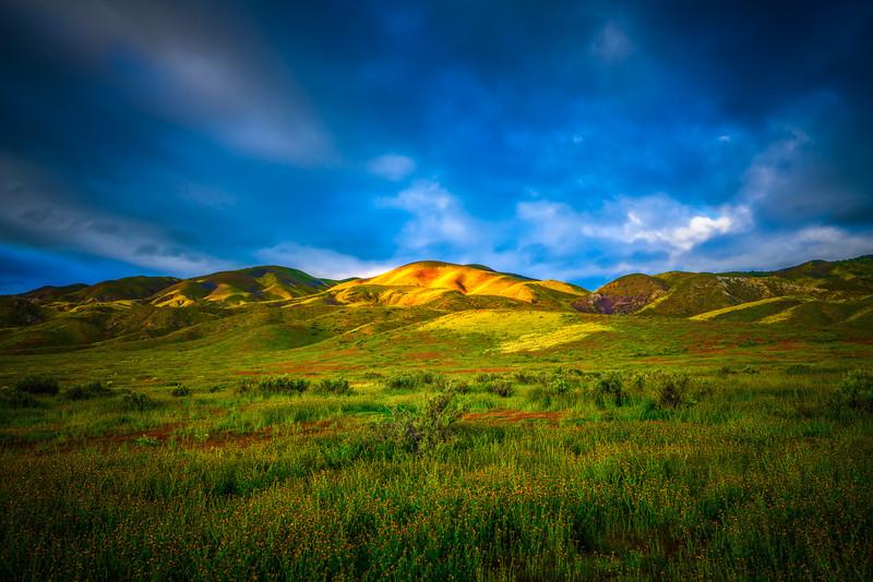 Carrizo Plain National Monument Wildflowers Superbloom Spring Symphony 16!  Elliot McGucken Fine Art Landscape Nature Photography Prints & Luxury Wall Art
