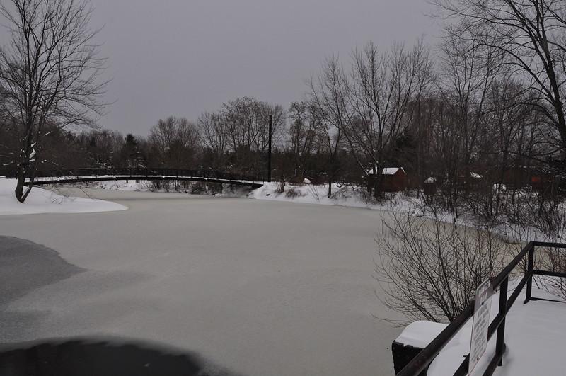 Winter12:13-Nemo-050.JPG