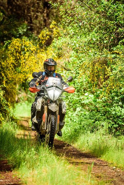 2019 KTM New Zealand Adventure Rallye (407).jpg