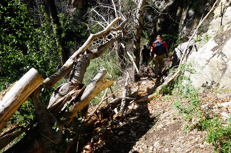 20160218090-Gabrielino Trail Scouting.JPG