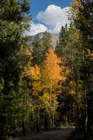 2014-09-Nature