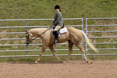 Senior Horse English Pleasure