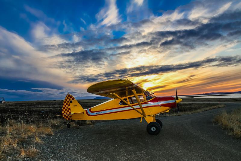 Piper Sunset