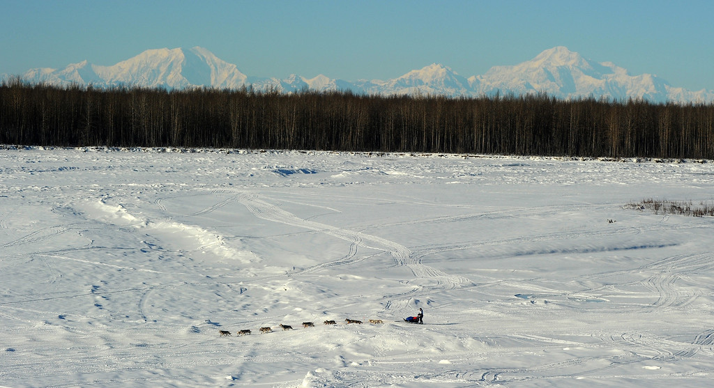 . A musher drives his dog team in front of Mount Foraker, Mount Hunter and Mount McKinley just after the start of the 2014 Iditarod Trail  Sled Dog Race out of Willow, Alaska, Sunday, March 2, 2014. The race will take mushers nearly a thousand miles to the finish line in Nome, on Alaska\'s western coast. (AP Photo/Anchorage Daily News, Bob Hallinen)