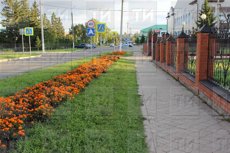 автор: Лилия Саттарова