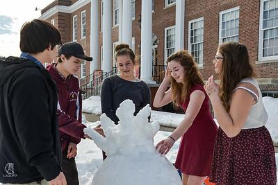 Snow Sculptures 2/22/17