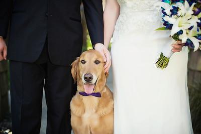 Stephanie & Adam // Kiana Lodge wedding by Vasquez Photography