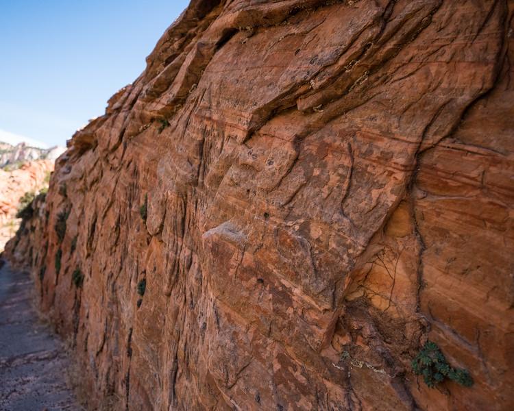 Zion Mt Carmel Highway_FullSize-11.jpg