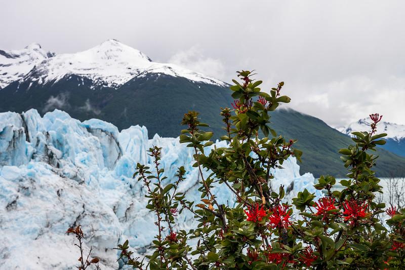Patagonia-77.jpg