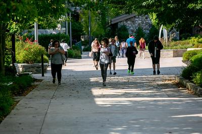 Brookdale Campus - 2019