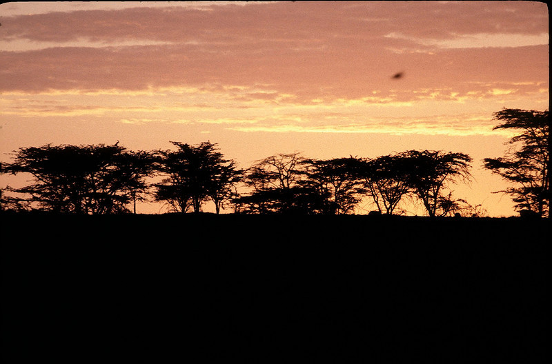 Kenya2_021.jpg