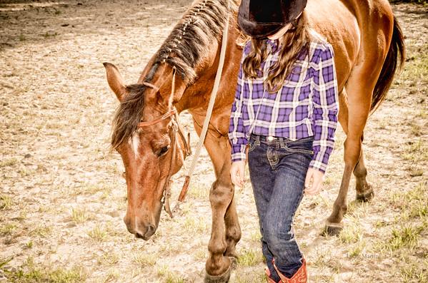 Makaela, Morgan Cross Pony