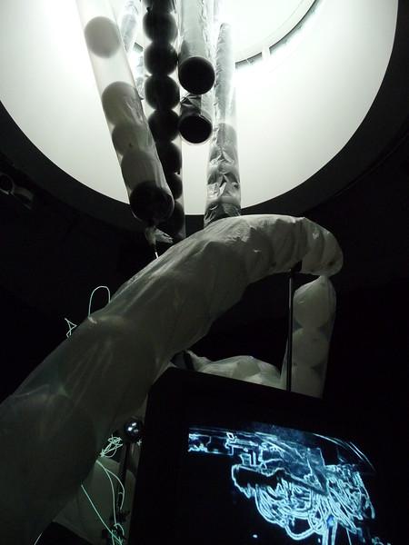 Heavy Flowers - 2012 - plastic tubing - balloons - tv monitors - video - sound