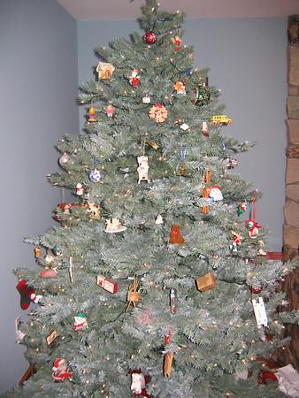 Michigan - Christmas 2009