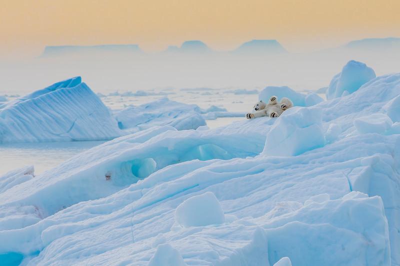 20180814_Svalbard-7422_SvalbardTimoT2018.jpg