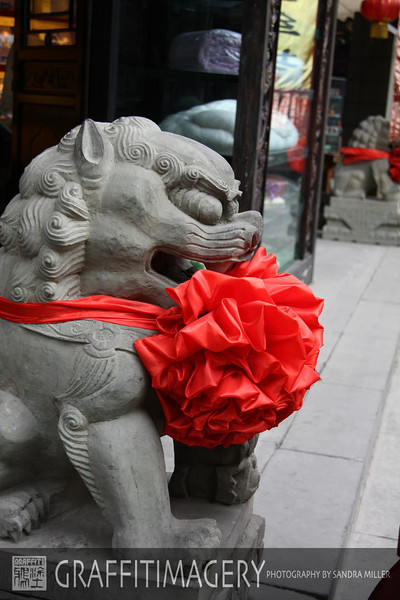 Chengdu Shopping around Shenzen Temple 2010