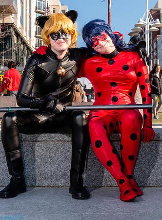 Chat Noir & Ladybug