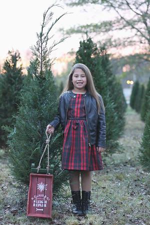 {Medley|Christmas 2015}