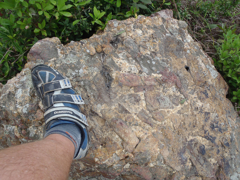 the very hard Lamma rocks. Some sort of granite/igneous. Thankfully I didnt have to taste them